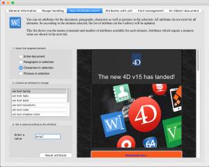 4D Write Pro Interface